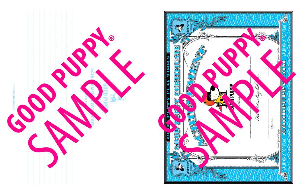 GP_CBES_HOME_SuperSidekick_Print_Perf_978-1-940692-52-4_024-SAMPLE-Watermarked-58.jpg