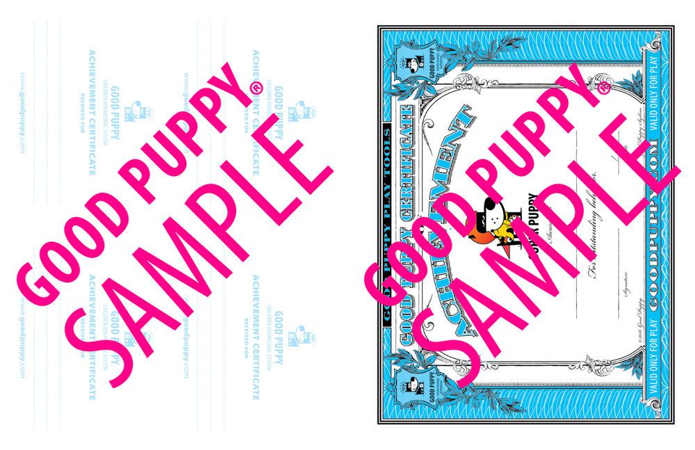 GP_CBES_HOME_SuperSidekick_Print_Perf_978-1-940692-52-4_024-SAMPLE-Watermarked-57.jpg
