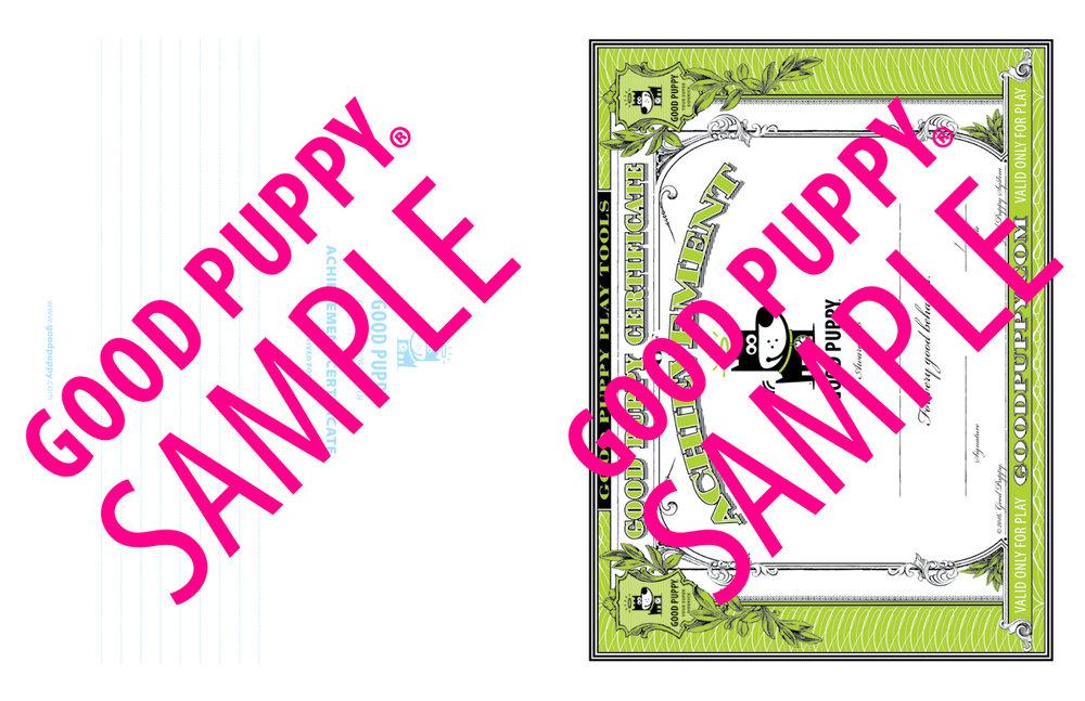 GP_CBES_HOME_SuperSidekick_Print_Perf_978-1-940692-52-4_024-SAMPLE-Watermarked-60.jpg