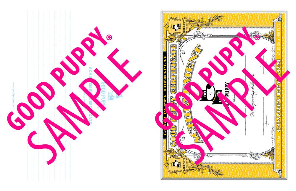 GP_CBES_HOME_SuperSidekick_Print_Perf_978-1-940692-52-4_024-SAMPLE-Watermarked-61.jpg