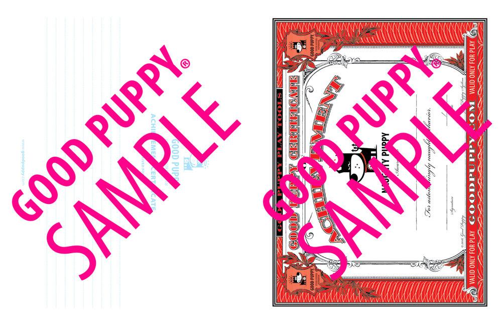 GP_CBES_HOME_SuperSidekick_Print_Perf_978-1-940692-52-4_024-SAMPLE-Watermarked-64.jpg