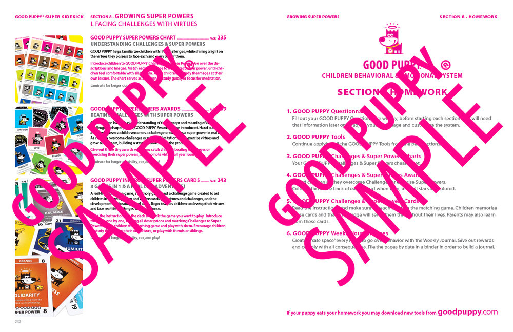 GP_CBES_HOME_SuperSidekick_Print_Perf_978-1-940692-52-4_024-SAMPLE-Watermarked-117.jpg