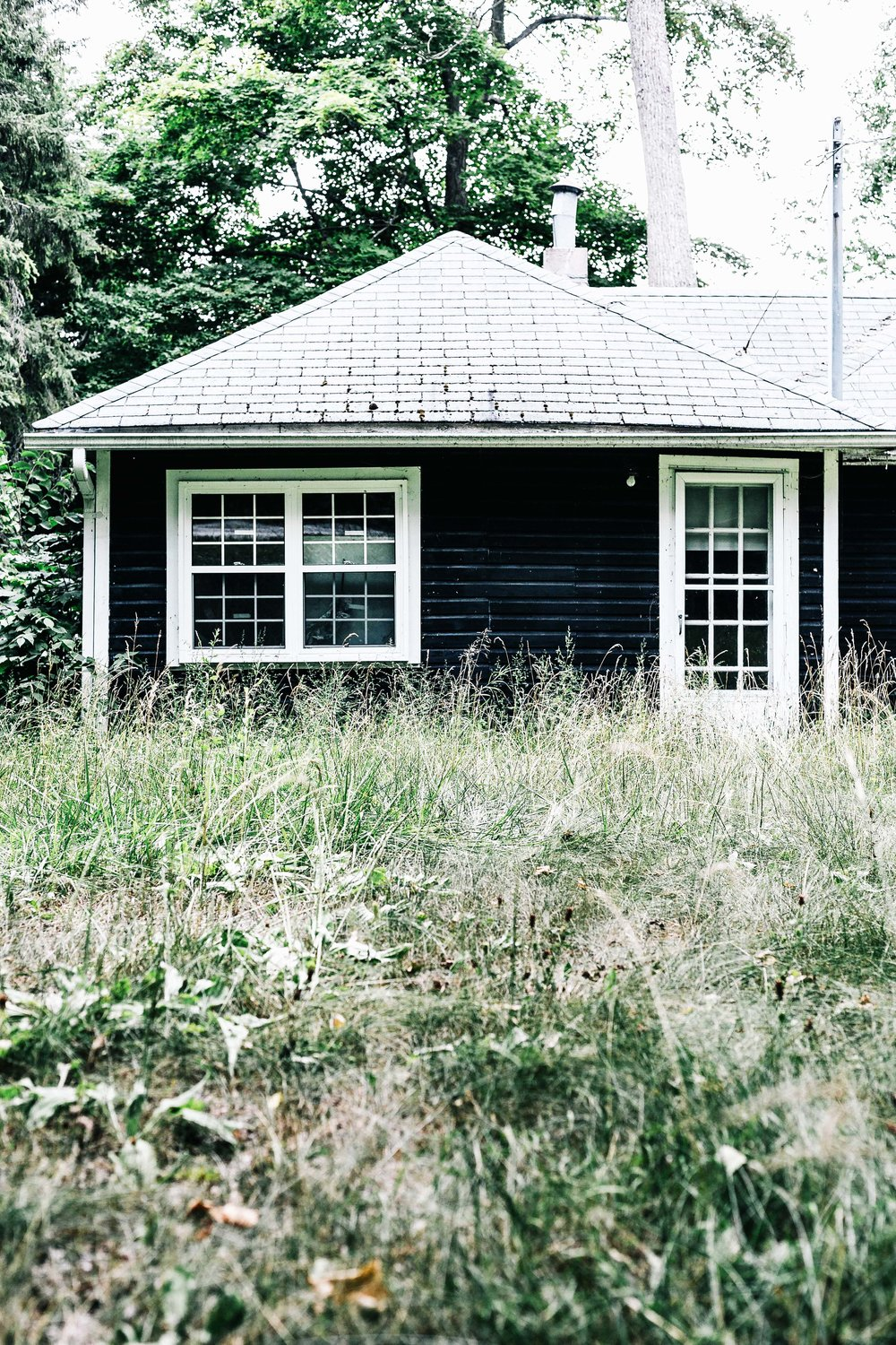 Oh_The_Potintial_Cottage-1 copy.jpg