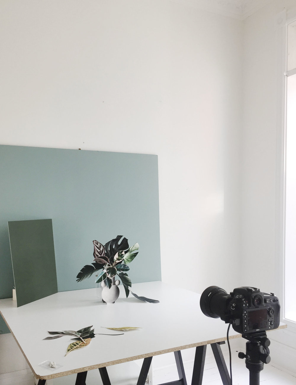 PhotoSynthesisI_Camera_BTS.jpg