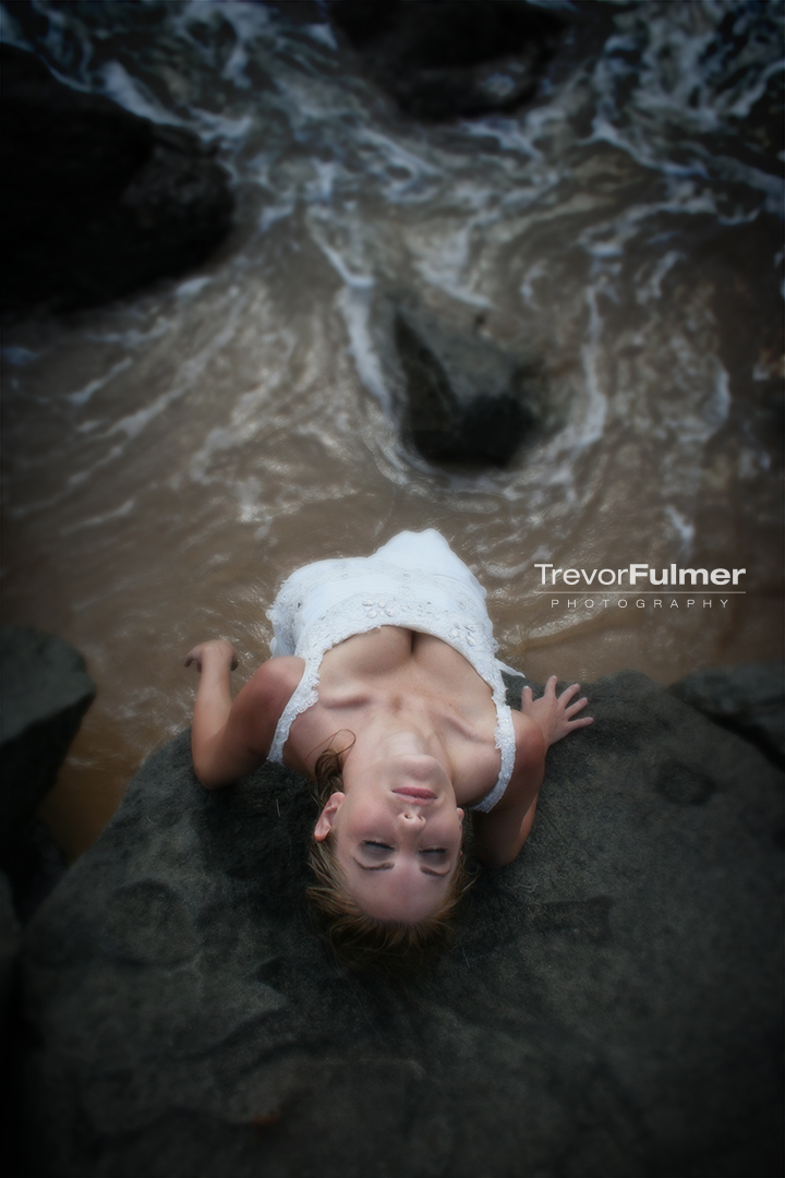 Drown the Gown — Trevor Fulmer Creative