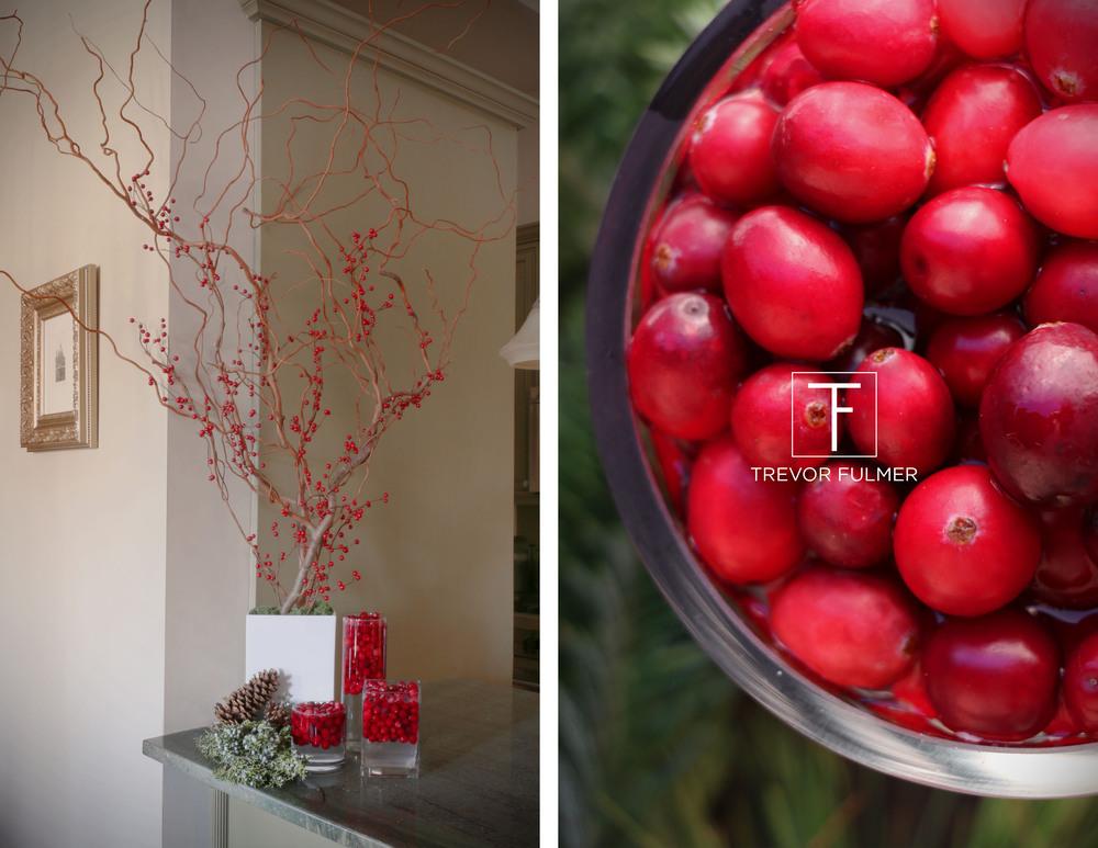Cranberries_logo.jpg