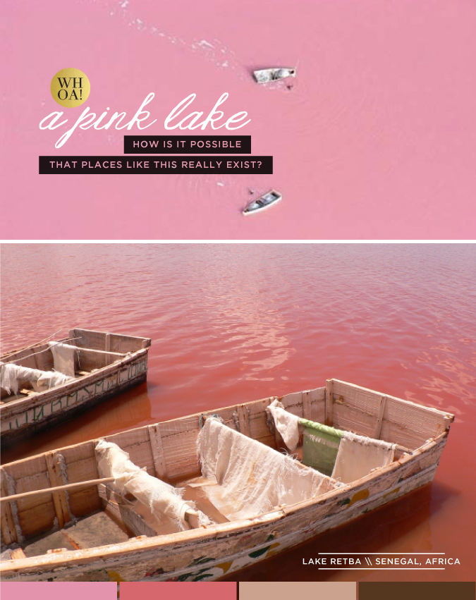pink lake - lake retba - via stacey day