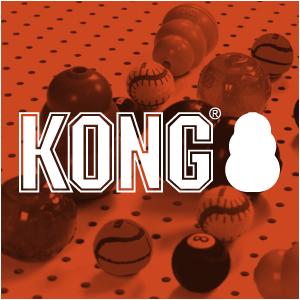 1 KONG.png