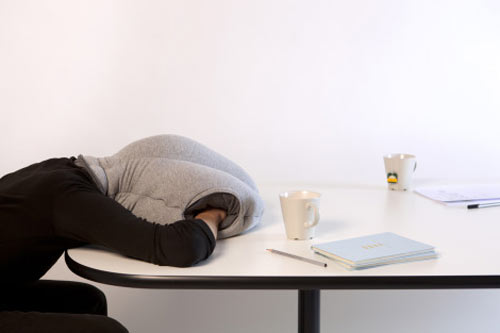 OSTRICH NAP PILLOW I think I need one of these pillows. ASAP!