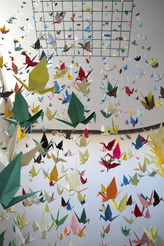 paper_cranes_02.jpg