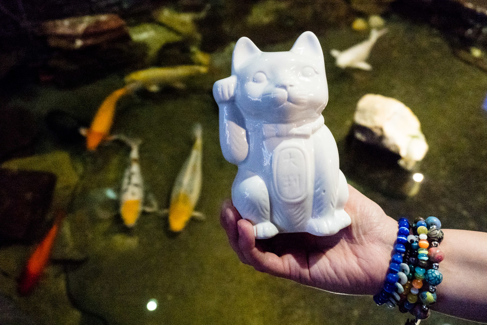 Porcelan Kitty. (Kissimmee, FL)