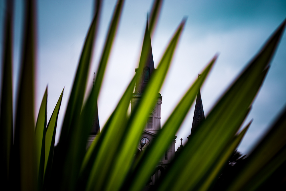 St. Louis Cathedral, French Quarter, New Orleans