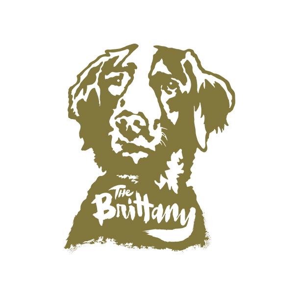 Brittany (Spaniel)