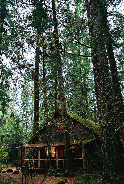 …and last month Anne and I went to this beautiful cabin near Mt. Hood with some other friends. -c