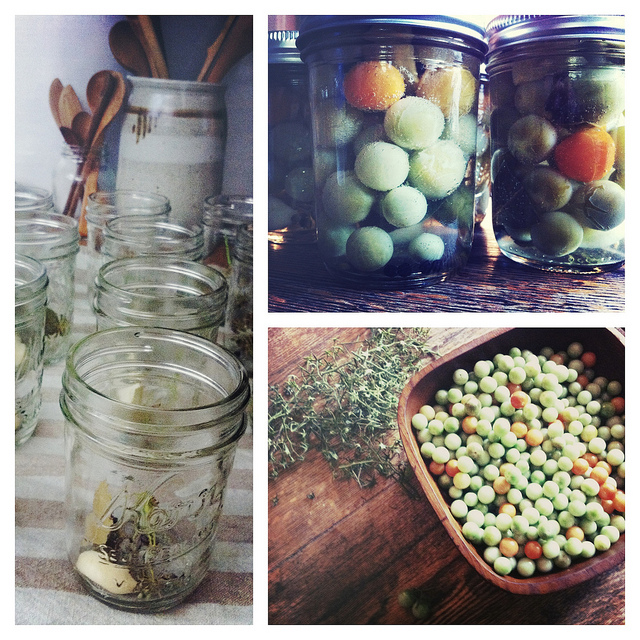 i did some canning over the weekend — a perfect fall project. -a