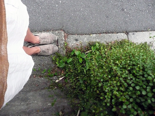 these feet have done a lot of walkin' around tokyo.   -a