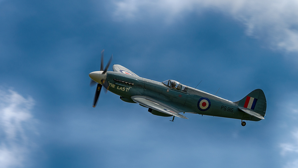 I absolutely love these World War II classics like the Spitfire - very few still fly and the ones that do mostly reside in Europe, so it was a real treat to be buzzed by them during the show.