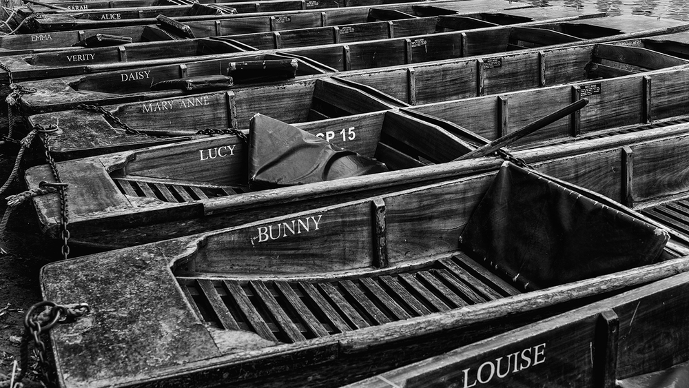 A row of punts lined up on the River Cam
