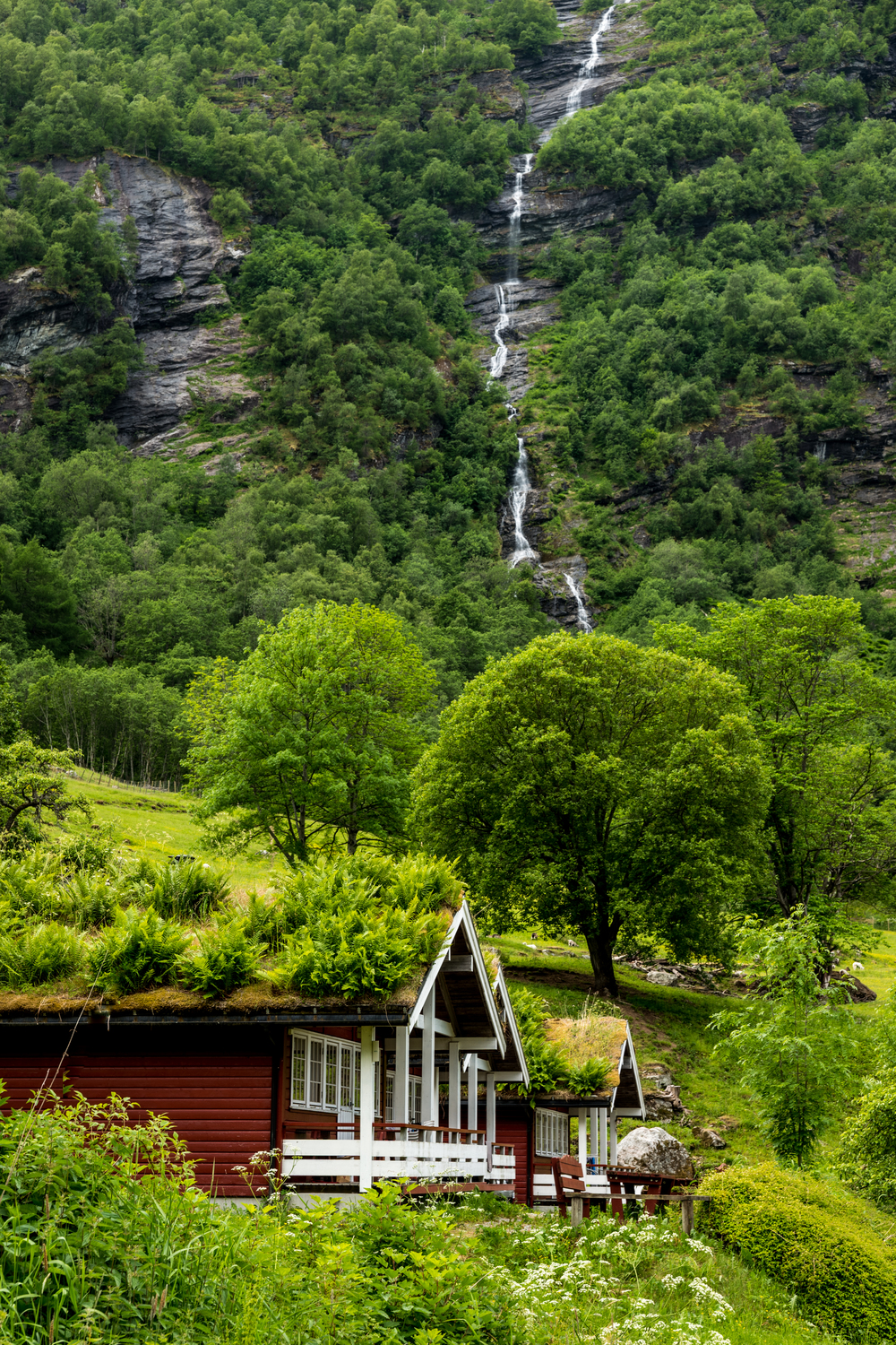 Sod roofs on homes in Geiranger Fjord, Norway