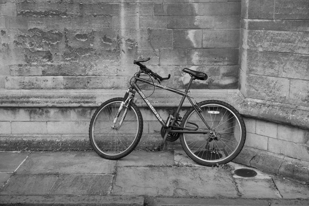 Leica M Monochrom image