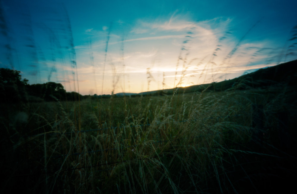 The motion blur is the result of wind and a long exposure to capture the sunset over some English farmlands
