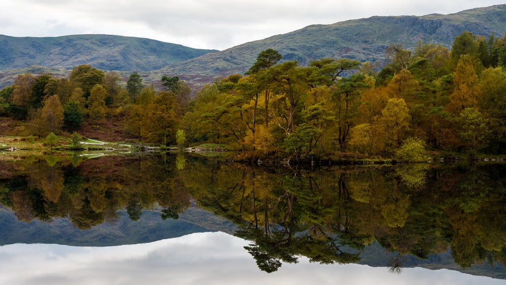 Reflections on a perfectly calm day at one of the Tarns in the Lake District