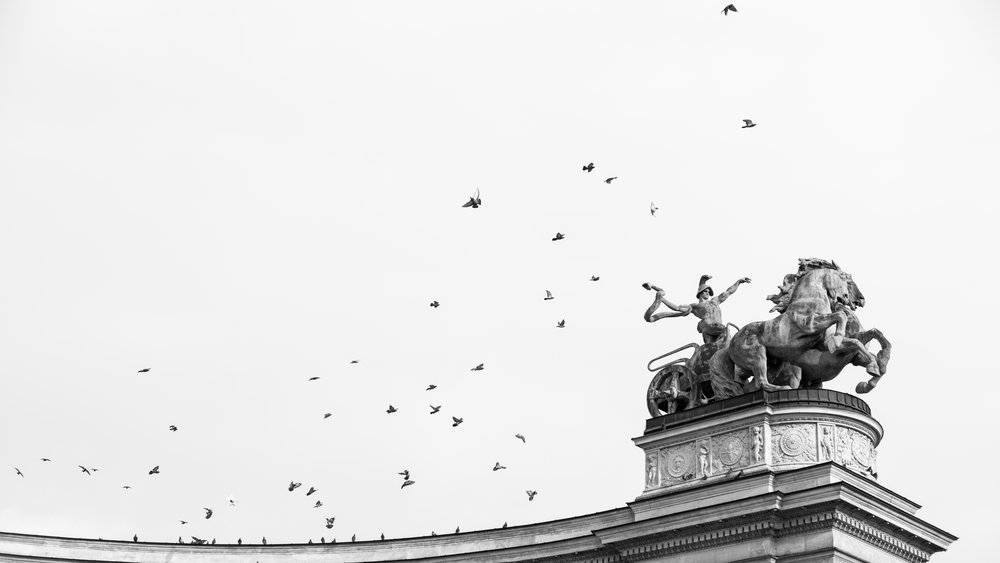 Everyone else in the Hero's Square of Budapest was photographing the monuments. I was pre-focused and pre-composed waiting for the birds to take off. After a few long minutes of pigeon watching, they finally jumped into flight. Best yet - their flight path worked perfectly with the direction that dude in the statue was pointing. Winning!