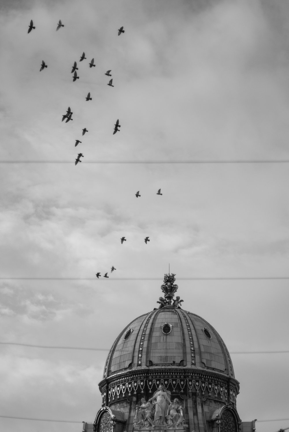No patience here - just luck. This is why I always carry my camera turned on - I turned around just to see these birds flying over the dome. Sadly some power lines were in the way, but it adds and interesting element to the image still.