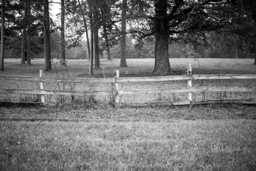 A white picket fence surrounding the property lines.