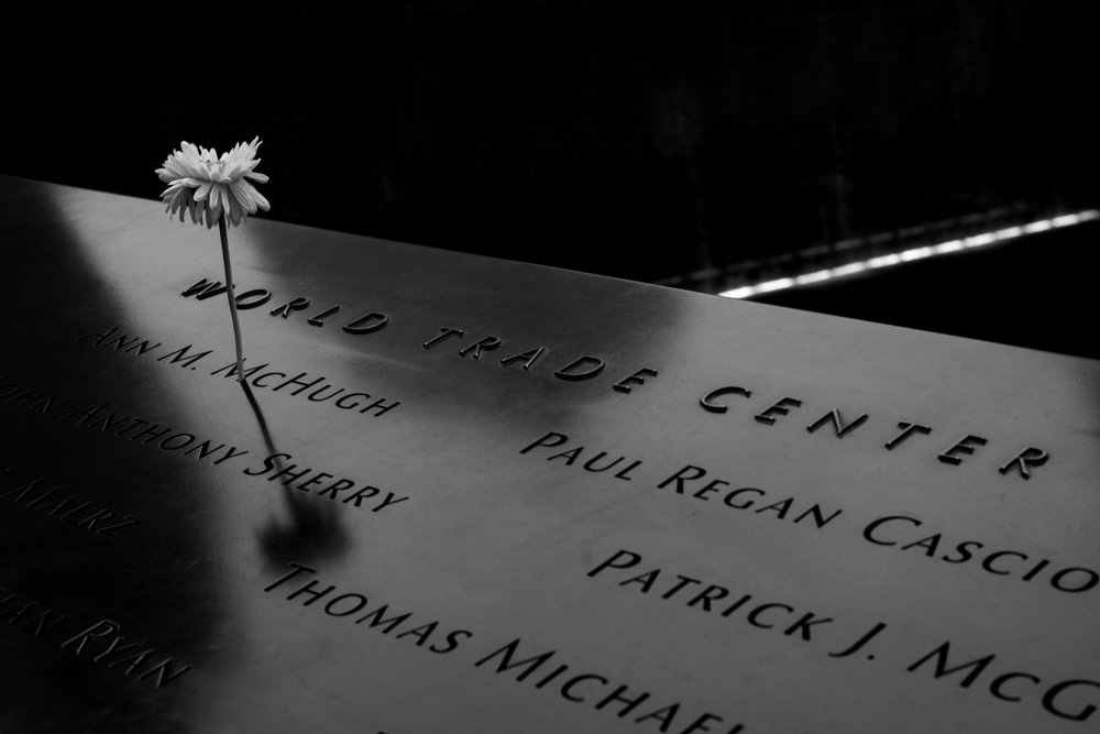 A flower in the memorial to the World Trade Center. The shadow of One World Trade casts across the memorial.