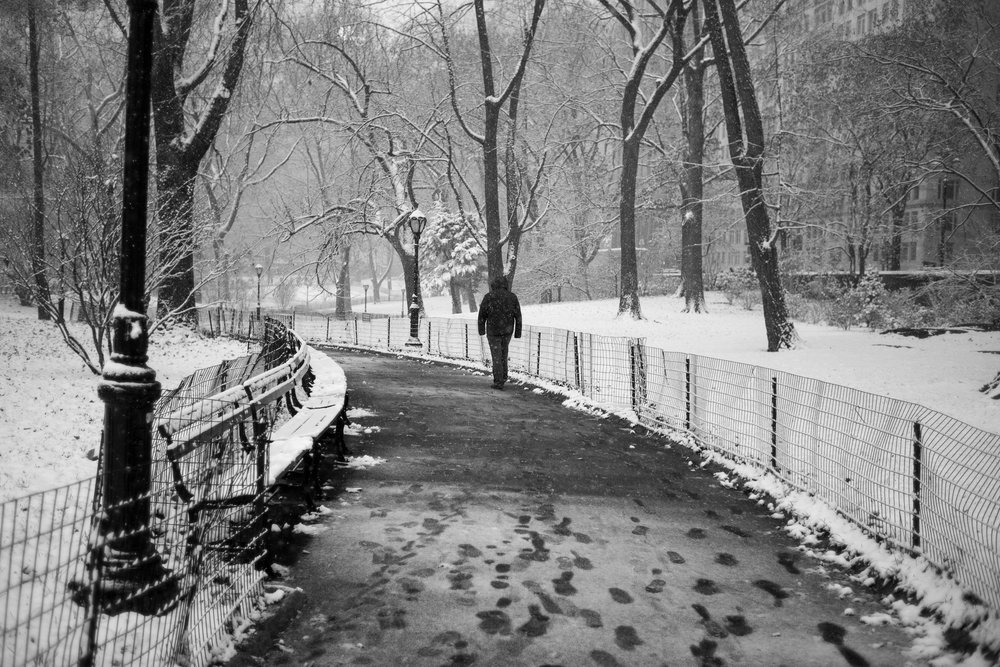 A man strolls through the snow in Central Park