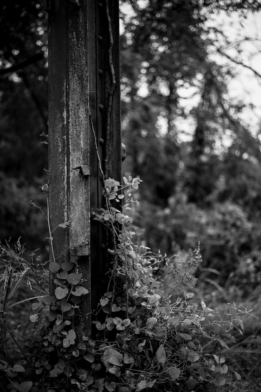 Urban decay. Nikon Z7 with Zeiss Milvus 50mm f/2.