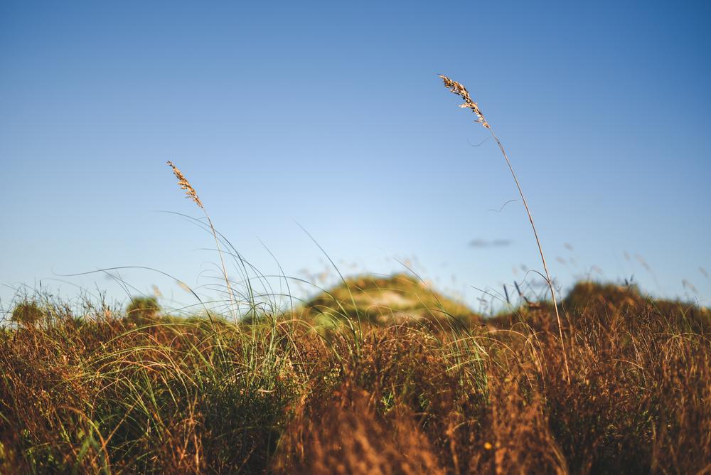 ponce sunrise-4.jpg