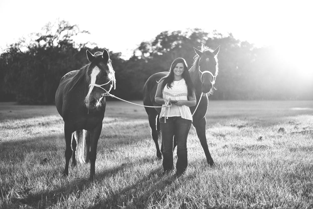 Horses-Portraits-38.jpg