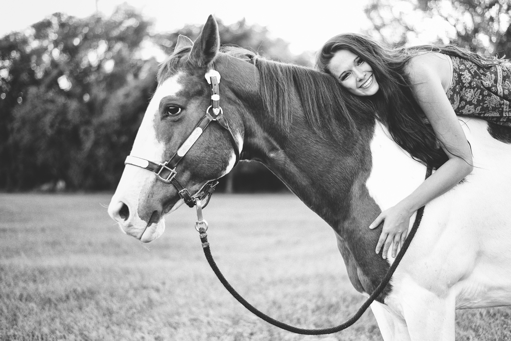 Horses-Portraits-36.jpg