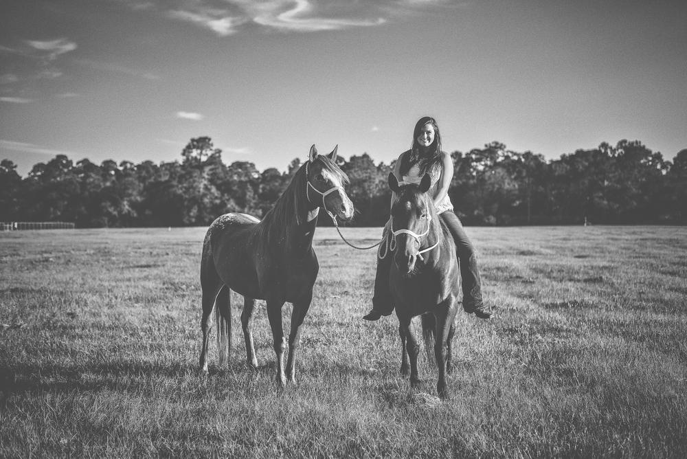 Horses-Portraits-34.jpg