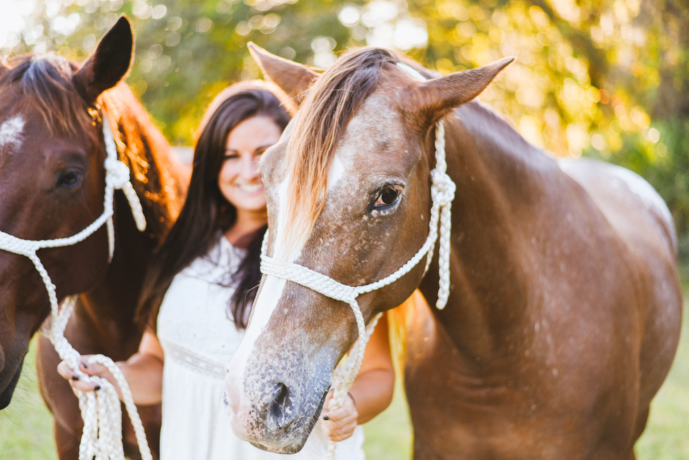 Horses-Portraits-16.jpg