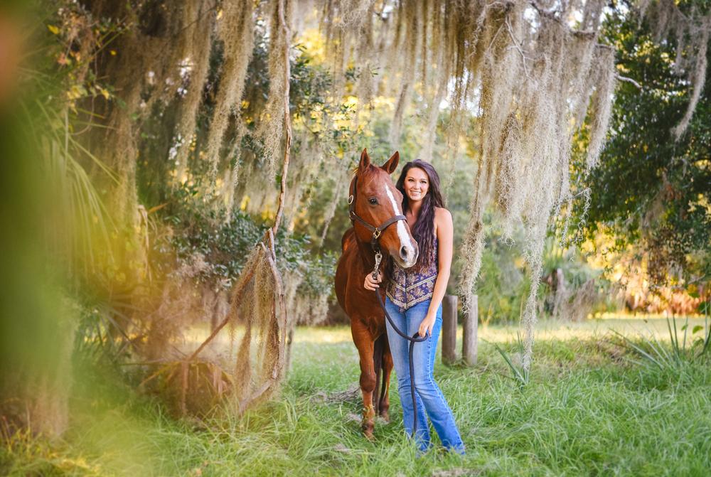 Horses-Portraits-7.jpg