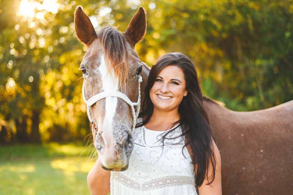 Horses-Portraits.jpg