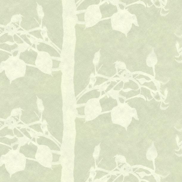 Forest Moss_wallpaper_square-min.jpg