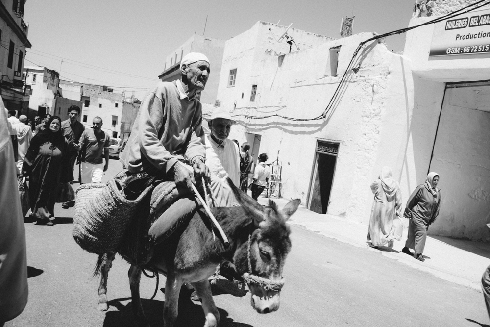 man_on_donkey_travel-1.jpg