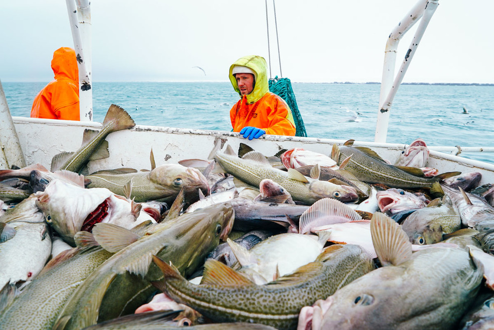 fisherman_story_blog-8.jpg