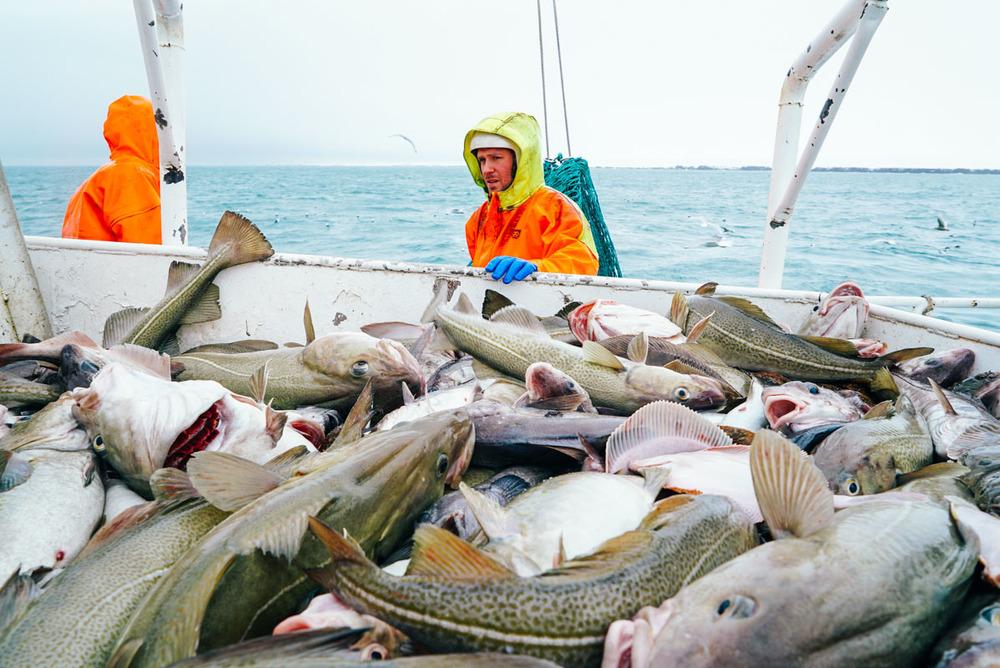 fisherman_story_blog-8.jpg