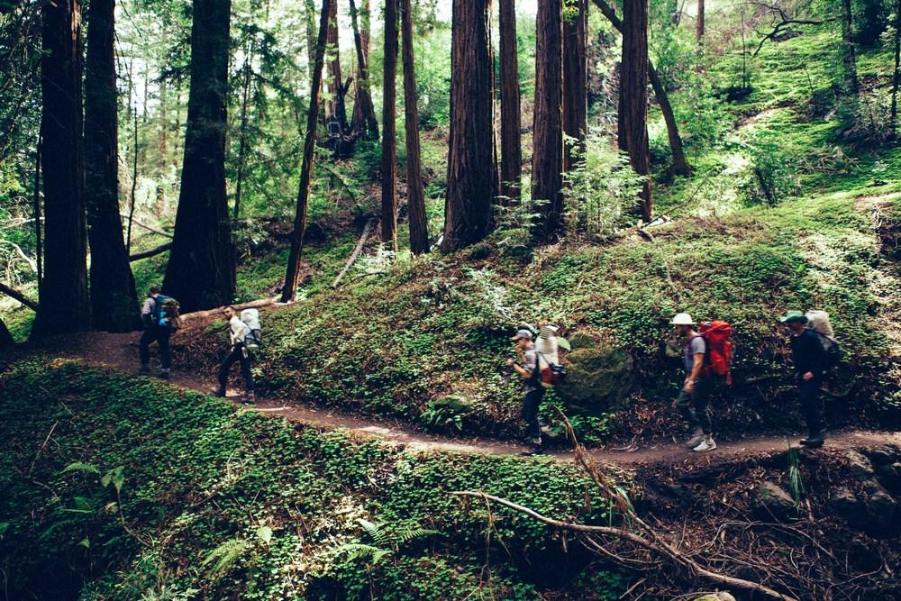 juniper_ridge-9.jpg