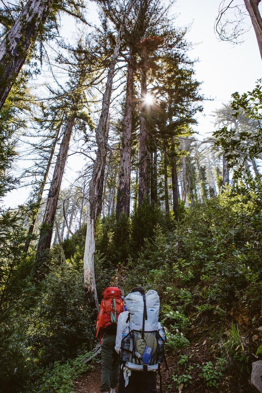 juniper_ridge-13.jpg