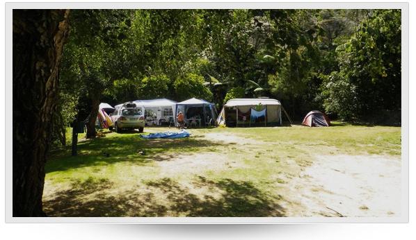 Momorangi Bay DOC campsite