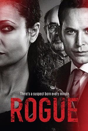 Rogue S3
