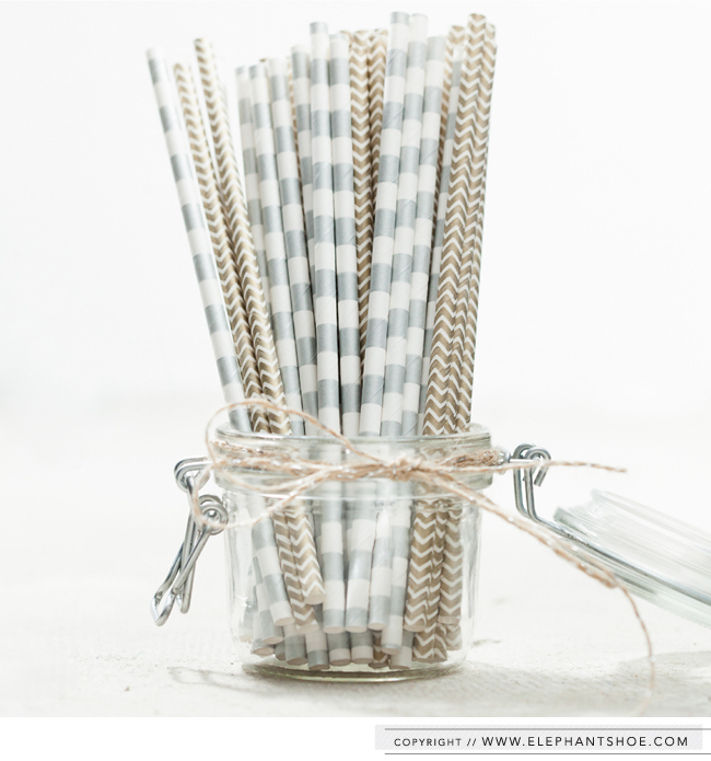 Paper Straws from the Elephantshoe Shoppe |  Photo By : Blackframe Photography