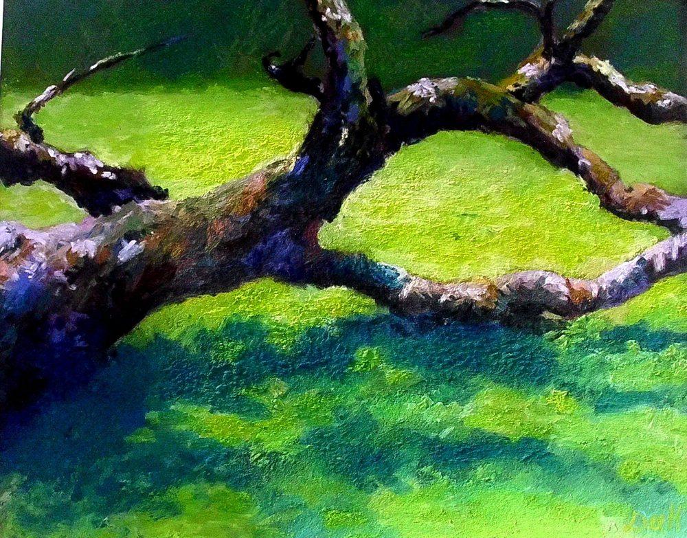 Old Apple Tree.JPG