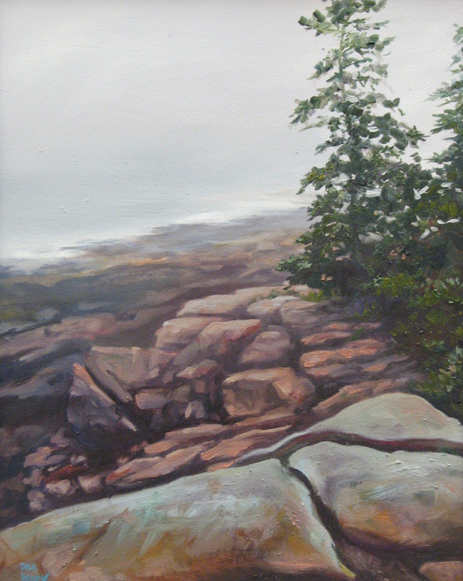 Acadia Near Thunder Hole.jpg
